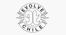 iconHomePageChile